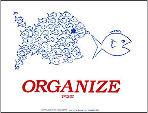 organize-big-fish.jpg